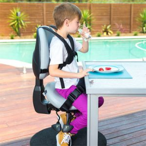 Bambach saddle seat for special needs